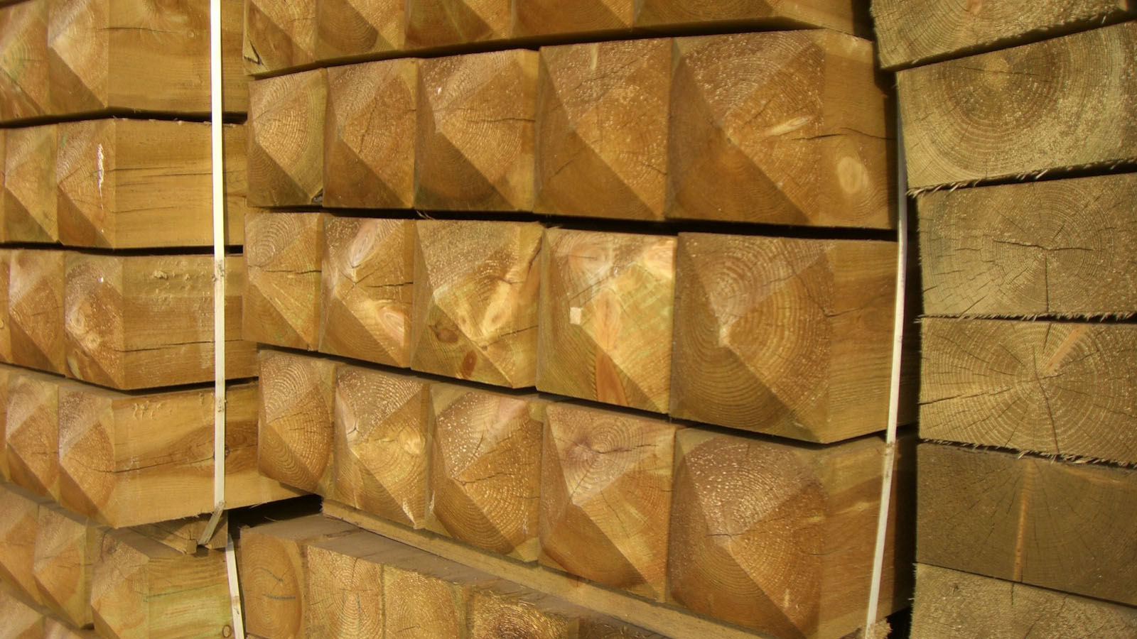 1-fencing-garden-products-and-other-specialty-products-nothern-europe-timber-production-lameko-impex