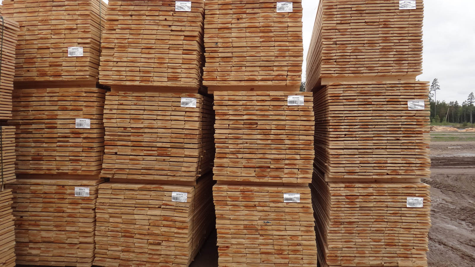 3-side-boards-nothern-europe-timber-production-lameko-impex