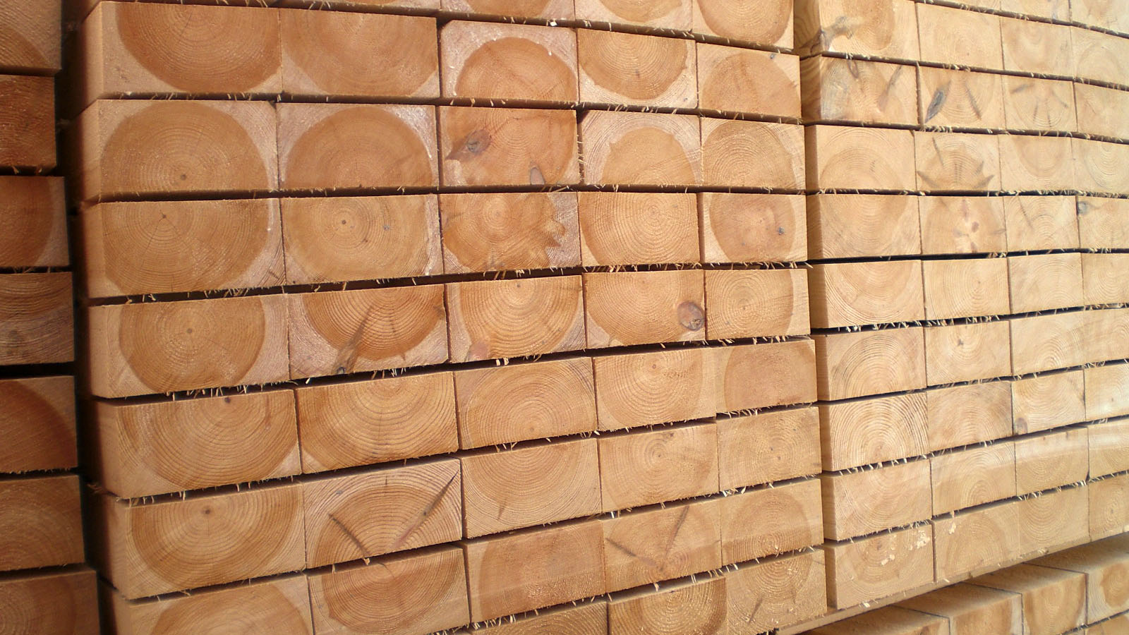 6-fencing-garden-products-and-other-specialty-products-nothern-europe-timber-production-lameko-impex
